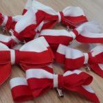 Święto Niepodległości - kokardy w barwach narodowych